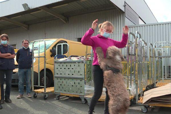 Caroline Roignant, éducatrice canine et factrice forme ses collègues