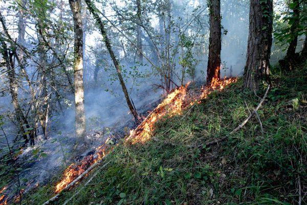 Avec près de deux cent mille hectares de forêt, le Bas-Rhin est soumis au risque de feux de forêts.