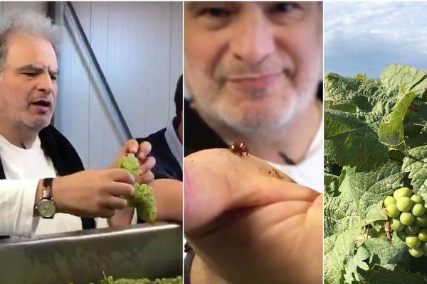 Raphaeël Mezrahi défend le champagne vegan qu'il produit dans l'Aube.