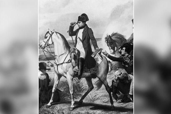 Parmi les nombreux chevaux de bataille de Napoléon, l'un d'entre eux, originaire d'Auvergne, s'appelait Cantal.
