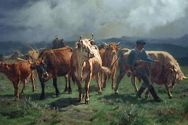 Domestiques, sauvages ou de la ferme, l'homme a toujours représenté les animaux dans tous les courants de l'histoire de l'art
