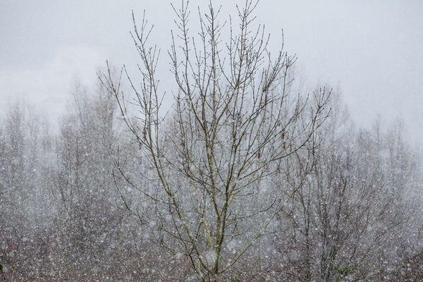 Les prévisionnistes de Météo France annoncent une limite pluie-neige à 1 400 m pour l'Auvergne lors de la journée du 5 novembre.