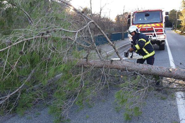 Les pompiers interviennent pour dégager la route entre Villeneuve-Loubet et Roquefort-les-Pins