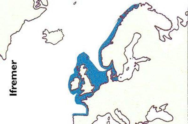 Zone de répartition de la coquille Saint-Jacques