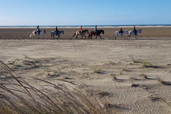 Balade le long des plages de l'Espiguette pour ces touristes.