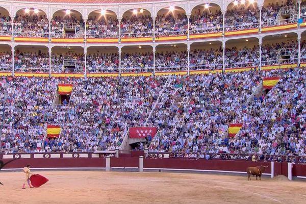 """Madrid, 29 / 09 / 19. Perera et le toro """"Portugués"""" : une des faenas les plus émouvantes de la saison."""