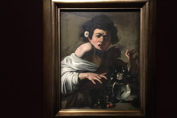 """""""Le garçon piqué par un lézard"""" du Caravage exposé au musée des Beaux-Arts de Caen à l'occasion de l'exposition """"L'école du regard"""""""