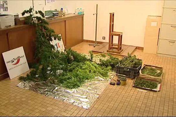 800 grammes de Cannabis saisi à côté de Bourges