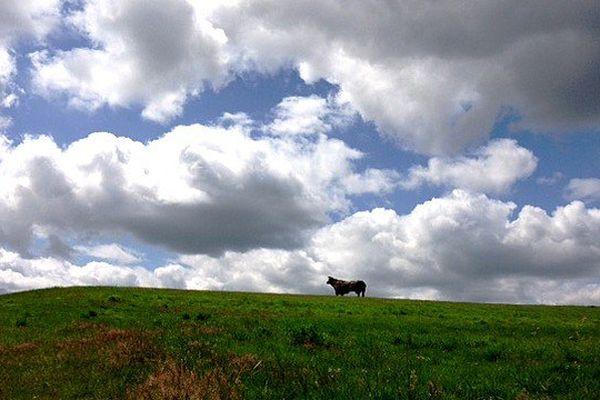 Statue d'un taureau sur une colline à Lannaud (Haute-Vienne)