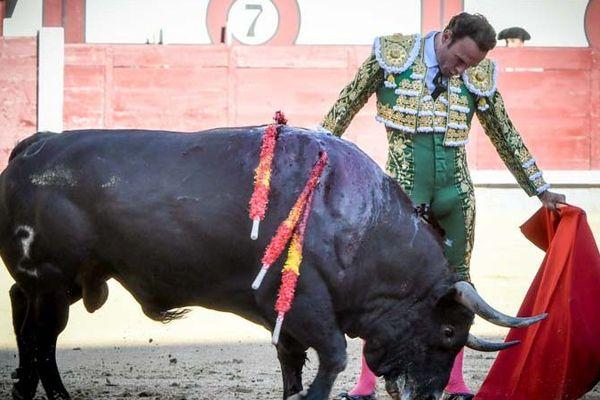 "Relâchement total. Antonio Ferrera et ""Bonito"" de Zalduendo. Madrid, 1er juin 2019"