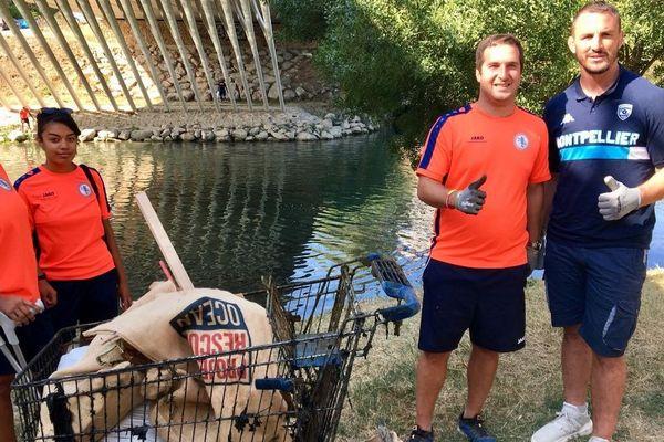 Plus d'une centaine de sportifs de Montpellier ont ramassé des déchets sur les berges du lez - 5 septembre 2018