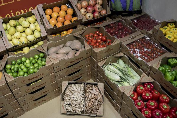 Les agriculteurs bio bénéficieront d'aides au maintien jusqu'en 2019