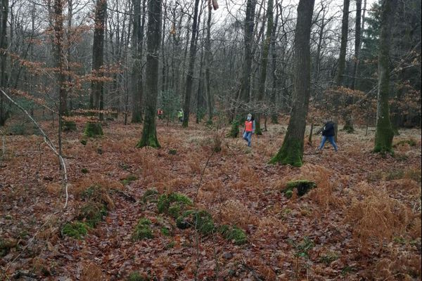 Une cinquantaine de personnes ont mené des recherches dans le bois de Bellou à Vimoutiers pour retrouver Réjane Tougard, 73 ans, disparue depuis le 15 décembre.