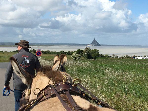 Cette randonnée dans la baie du Mont Saint Michel, Christel et Franck Prevel la font régulièrement avec des amis et leurs ânes