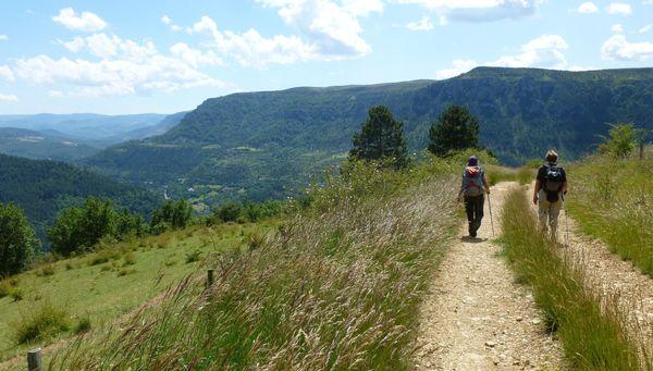 Sur le chemin de Stevenson, entre Le Pont-de-Montvert et Florac