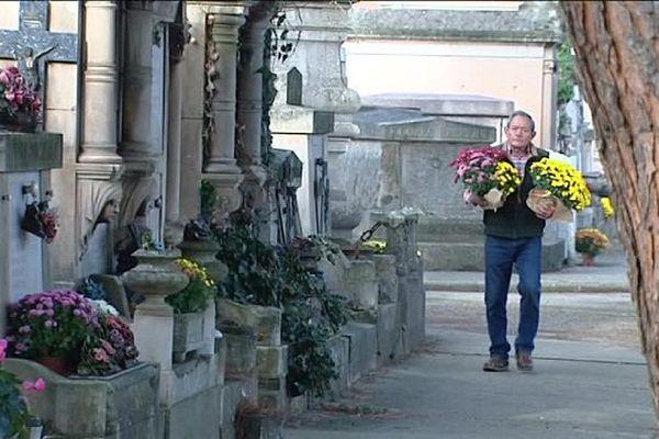 Le chrysanthème, symbole de la Toussaint et de la fête des morts.