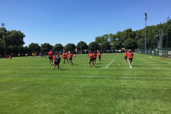 Les joueurs du Stade Toulousain ont de nouveau le droit de s'entraîner collectivement et d'échanger des ballons.