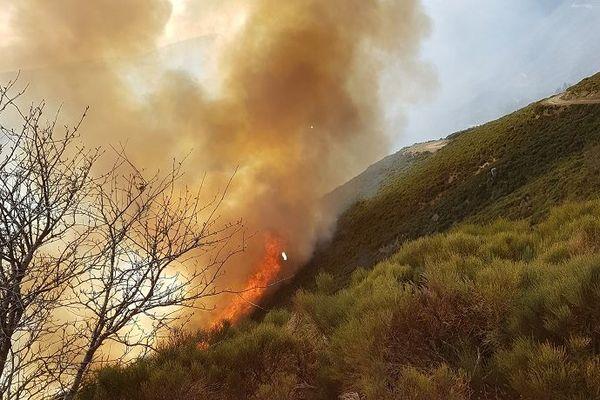 Un important feu de végétation est en cours dans le nord de l'Ardèche. Des maisons sont menacées.