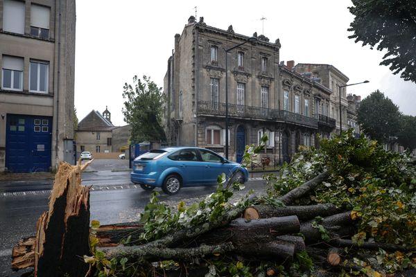 Chute d'arbres sur les boulevards à Bordeaux après le passage de la tempête Amélie