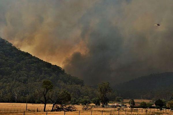La sécheresse de cet été en Australie a empiré la propagation des incendies ces dernières semaines.