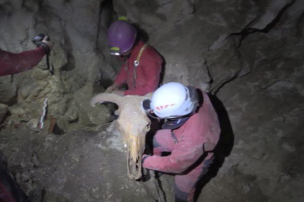 Les ossements ont été découverts au fin fond d'un gouffre, à plus de 25 mètres de profondeur, il y a un an
