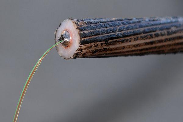 Entourée d'une gaine protectrice, la fibre optique peut être utilisée pour conduire de la lumière entre deux lieux distants de plusieurs milliers de kilomètres. Le signal lumineux codé par une variation d'intensité transmet une grande quantité d'information.