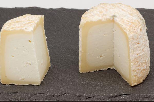 Le Chabichou, fromage originaire du Poitou, bénéficie d'une Appellation d'Origine Protégée (AOP) depuis 1996.