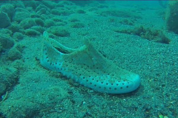 Le plastique contribue au réchauffement climatique.