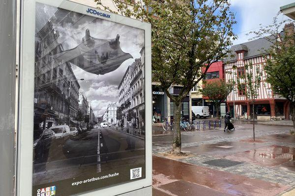 Dans la métropole de Rouen, les œuvres de 20 artistes ont pris place dans des panneaux publicitaires
