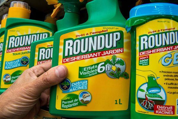 Le Roundup, produit phare de Monsanto et désherbant le plus vendu au monde, contient principalement du glyphosate.