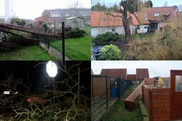 Les vents violents de samedi ont fait des dégâts à  Linselles, Quesnoy-sur-Deule, Hazebrouck et Isbergues et d'autres communes des Flandres et de la côte d'Opale