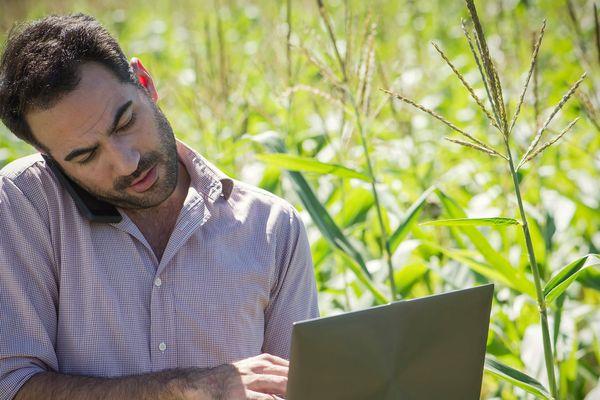 79% des agriculteurs utilisent internet : c'est plus que la moyenne française