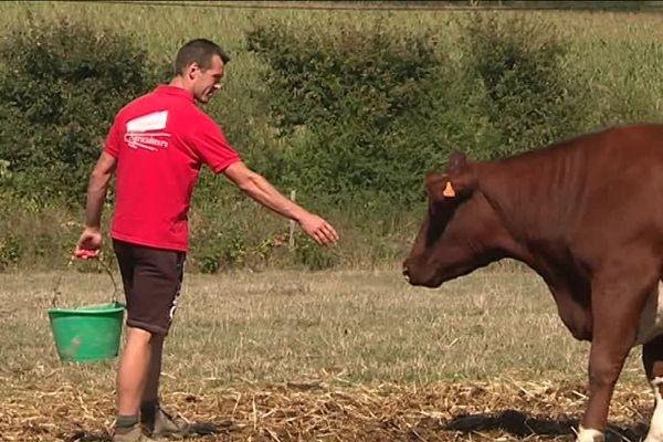 C'est sur l'exploitation de Sylvain Rousselet à Ruillé-Froid-Fonds que le ministre de l'Agriculture Stéphane Travert se rendra en marge du déplacement d'Emmanuel Macron à Laval ce lundi 3 septembre.