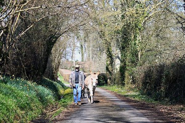 Un promeneur avec son âne sur un chemin de Boischampré (Orne)