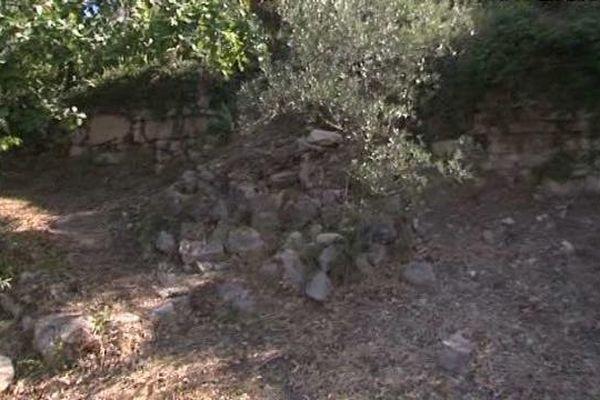 Un muret de pierres démonté par des sangliers pour entrer dans une propriété.