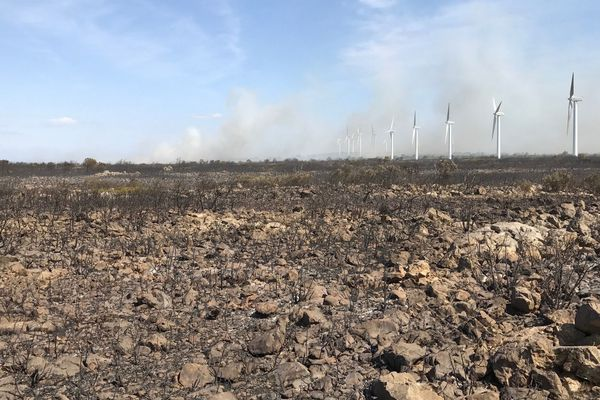 Zone sinistrée autour des éoliennes du plateau de La Palme