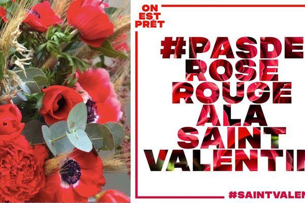pas de rose rouge pour la saint-Valentin