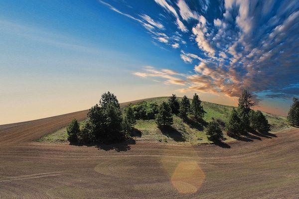 """""""Les sols appauvris depuis des dizaines d'années sont notre patrimoine"""""""