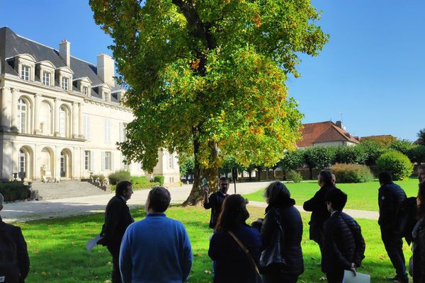 Grand Est - Haute-Marne - Arc-en-Barrois - le château - photo PCC Grand Est.jpg