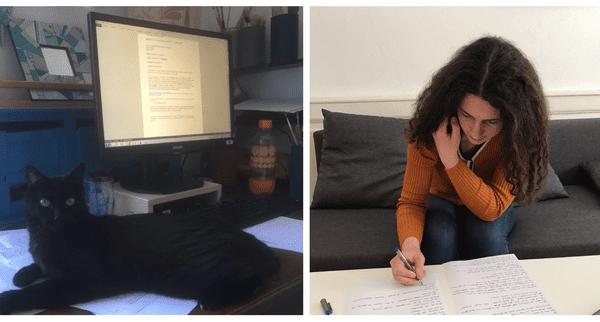 Au plus près de l'information ! Sabine travaille avec son chat et Muriel depuis son canapé qui lui sert de bureau pendant le confinement.