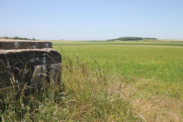 Vestiges d'un bunker à l'emplacement de l'ancien aérodrome d'Audembert (Pas-de-Calais).