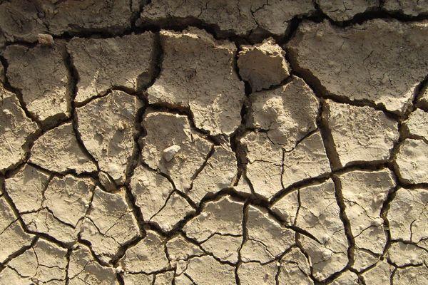 L'alerte sécheresse est déclarée pour toute la Métropole de Lyon et le département du Rhône, depuis le vendredi 5 avril. Photo d'illustration.