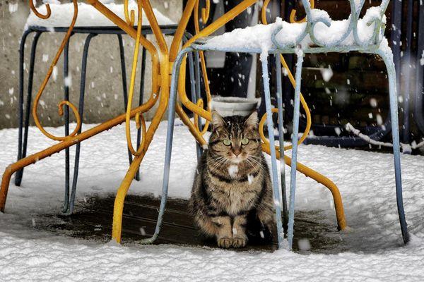 Acheux-en-Amienois sous la neige