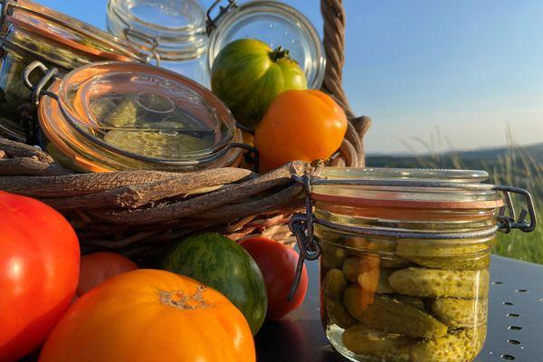 Les tomates peuvent être conservées dans des bocaux, sous forme de soupe ou de sauce.