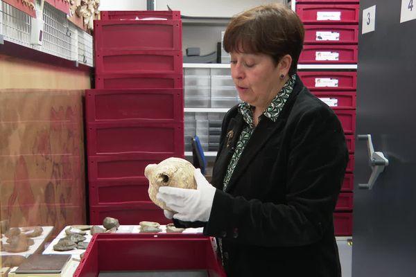 Carole Fritz est la chercheuse du CNRS (Centre National de la Recherche Scientifique), basé à Toulouse, qui a mené les recherches sur cette conque