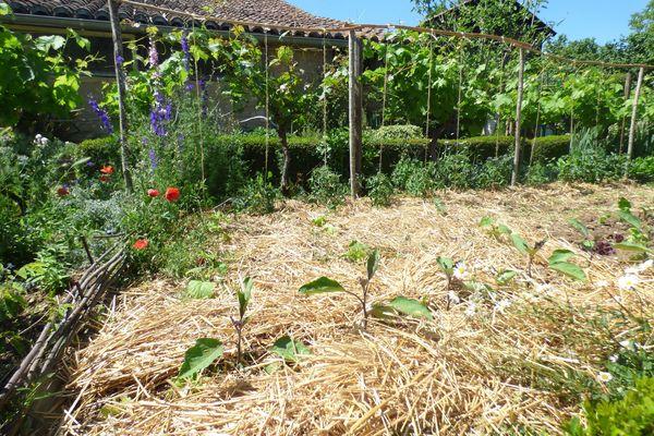 Paillage au jardin des Miettes à Cuzorn (47)