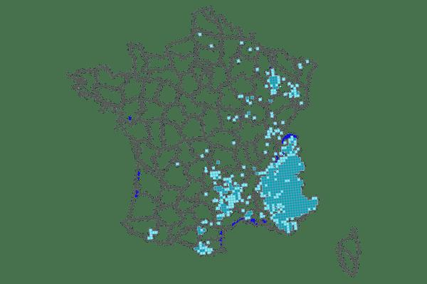 Carte 2019 de la présence du loup en France.