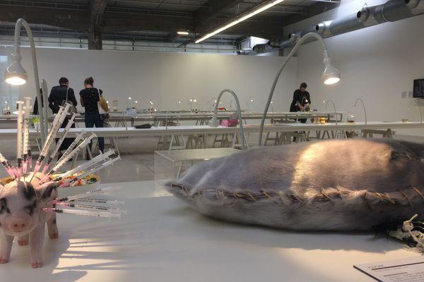 les visiteurs pourront s'ils le souhaitent déguster sur réservation les mets du monde entier présentés lors de l'exposition