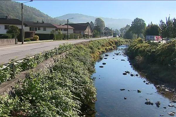 Sécheresse : les cours d'eau sont au plus bas. Image d'archive Fresse-sur-Moselle dans les Vosges.