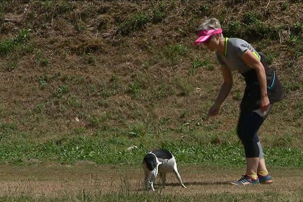 Neikki, le chien, en pleine épreuve d'agility à Avallon